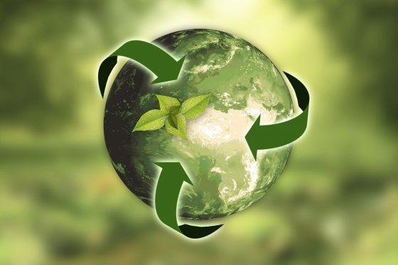 ¿Debería todo el mundo estar obligado a reciclar?